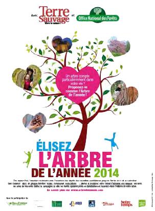 Affiche de l'arbre de l'année 2014