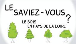 Le saviez-vous ? Le bois en Pays de la Loire