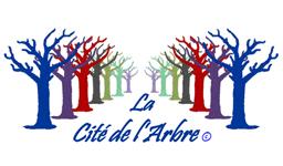 Cité de l'arbre ACTU