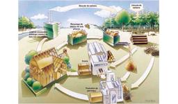 Schéma du projet foret bois pour la France