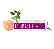 bois_foret